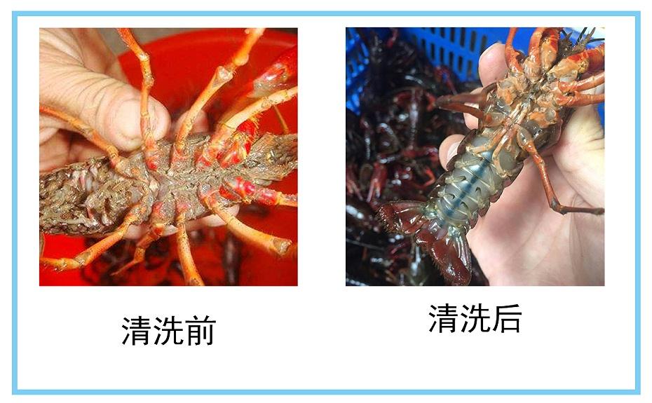 小龙虾清洗前后对比